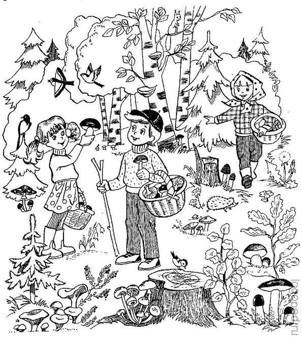 рассказ подглядели за родителями в лесу